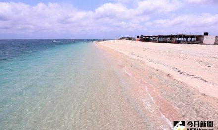 海鳥過境有家了 澎澎灘煥然一新成度假勝地